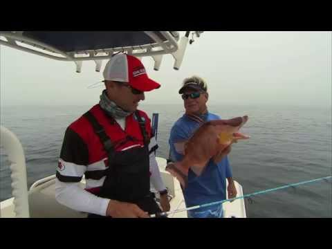 HOGFISH - Crazyiest looking fish I have ever caught