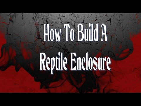 How To Build A Reptile Enclosure