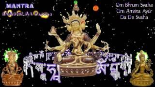 The Mantra Namgyalma - Phật Đảnh Tôn Thắng Ðà  Ra Ni_Tâm Chú-Xoay