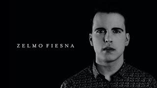 ZELMO FIESNA- Million Reasons (cover)