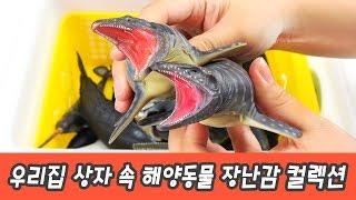 한국어ㅣ우리집 상자 속 해양동물 장난감 컬렉션, 어린이 동물 만화, 동물 이름 외우기ㅣ꼬꼬스토이