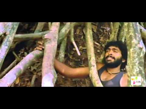 Nee Yeppo Pulla video song hd Kumki video songs hd