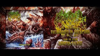 ATOLL - OVERGORGED IN GESTATION (FT. MATTI WAY) [OFFICIAL LYRIC VIDEO] (2019) SW EXCLUSIVE