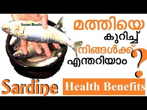 'മത്തിയെ' കുറിച്ച് നിങ്ങൾക്കെന്തറിയാം ? 'Sardine' - Health Benefits