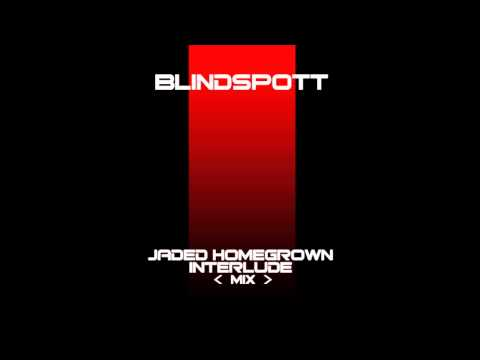 Blindspott - Interlude