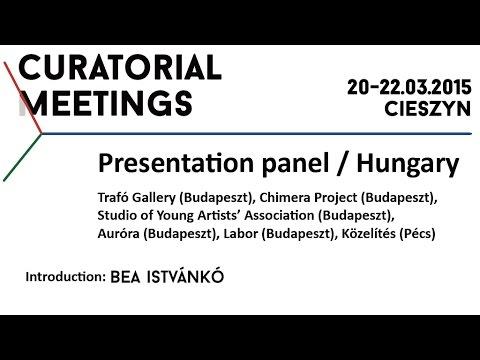 Curatorial Meetings / Introduction – Bea Istvánkó 25 // HU