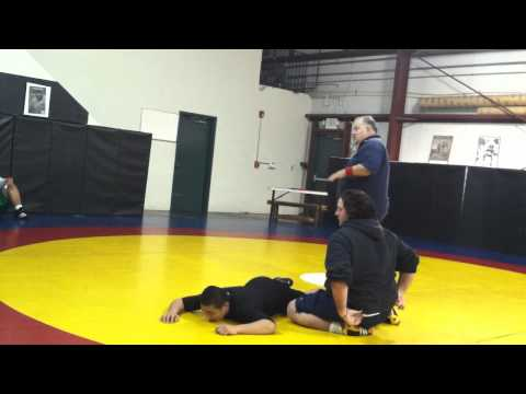 Freestyle Referee training Image 1
