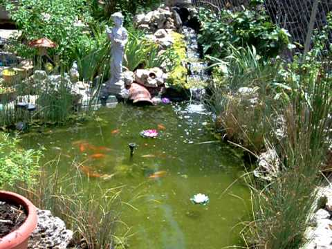 Estanque de jardin con cascada y peces youtube for Estanques para peces en tierra