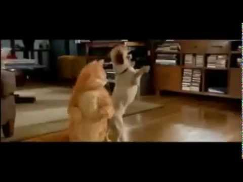 Garfield The Movie (2004) Trailer {Full Movie & Download} - CLOSED DOWN