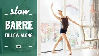 Follow Along Barre for Beginners | Lazy Dancer Tips