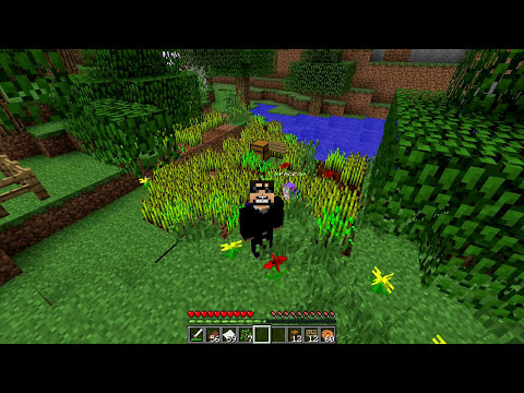 Minecraft - FAIRY MOD - FAIRY FACTIONS THAT WORK FOR YOU