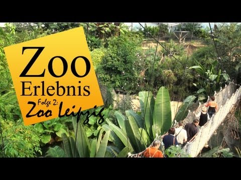 Leipziger Zoo video watch HD videos online without registration