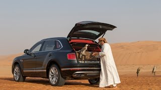 Bentley Falconry by Mulliner