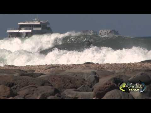 Surfing Summer Maui