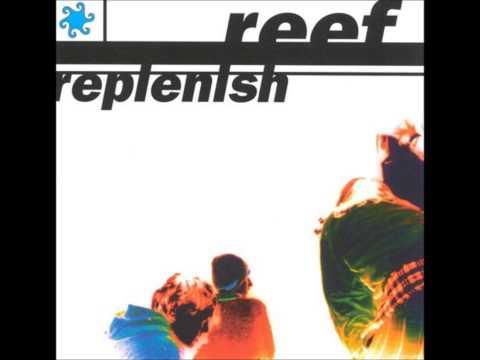 Reef - Comfort