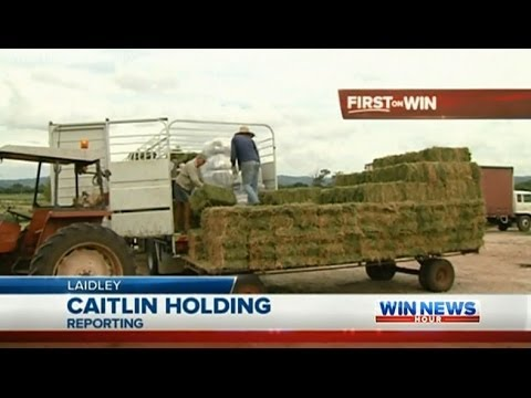 Qld Drought Coverage: Hay Drive (Part 1) - WIN News Rockhampton (2013)