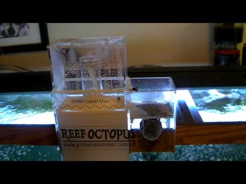 Reef Octopus 1000 Hang on the Back Protein skimmer BH1000 - Review