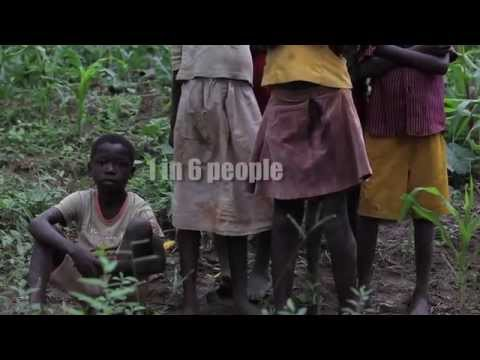 Neglected Tropical Diseases and the Global Agenda to End Poverty