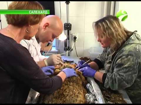 Найденная на Ямале 700-летняя мумия-сенсация оказалась мальчиком