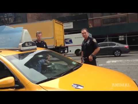 Watch the NYPD Break Traffic Laws To Question Cabbie Who's Driving Perfectly Legal