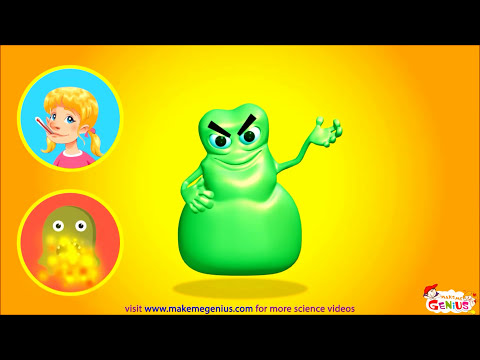 What are Germs ? - Major Types , Diseases, Infections ,Animation  Video