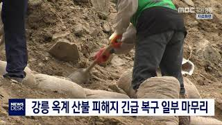 강릉 옥계 산불 피해지 긴급 복구 일부 마무리
