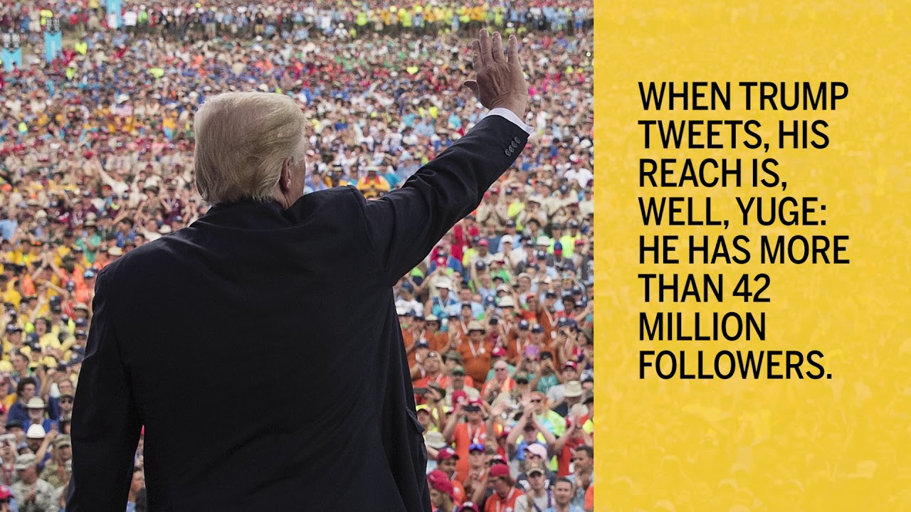 A year of Donald Trump's tweets