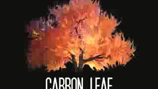 Watch Carbon Leaf Cinnamindy video