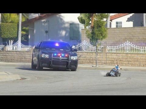悪いヒップホップ子猫と警察猫のカーチェイス♪