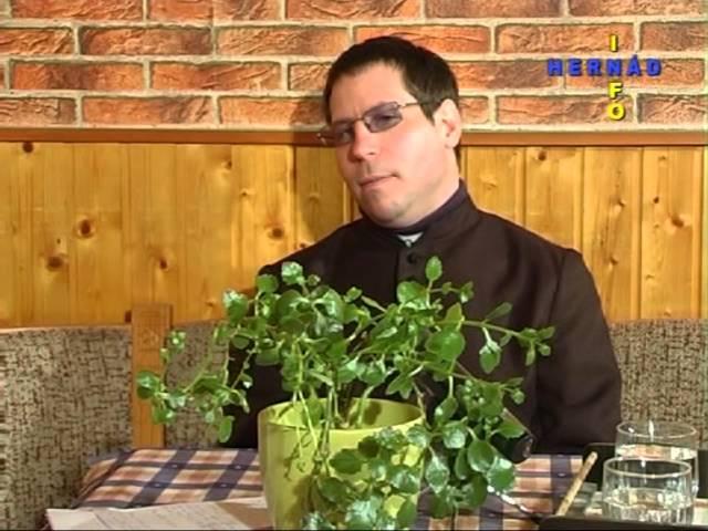Pápai kihallgatáson - Vukovich Márton élménybeszámolója