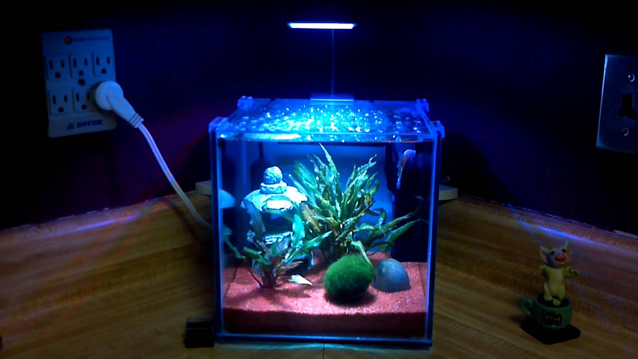 3 Gallon Cube With Led YouTube