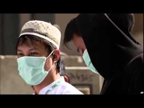 WHO Mission to Saudi Arabia to Target Mers Corona Virus