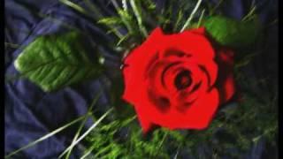 download lagu Bjork - Prayer Of The Heart gratis