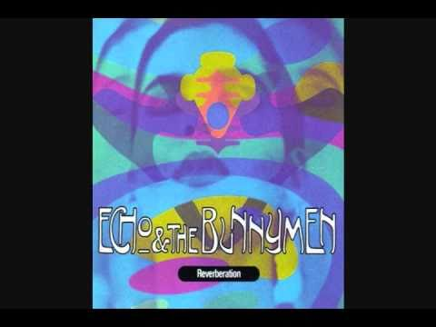 Echo & The Bunnymen - Cut & Dried