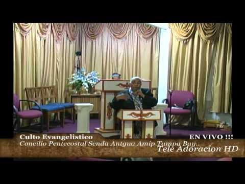 Culto Evangelistico, Conciio Pentecostal Senda Antigua AMIP Tampa Bay. 11-08-2015