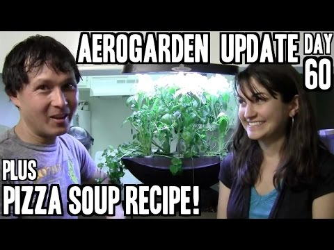 Aerogarden 7 LED Update Day 60 + Pizza Soup Recipe