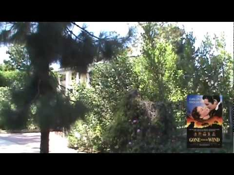 Hollywood Celebrity's Houses