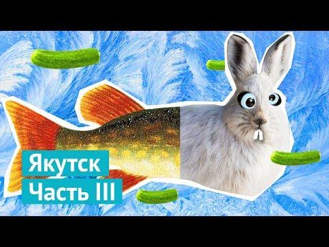 Якутск: букет из щук, носорог Саша и опасный квартал
