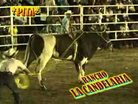 PALMAR CHICO EDO.DE MEX.LA REYNA DEL ESPECTACULO RANCHO LA CANDELARIA