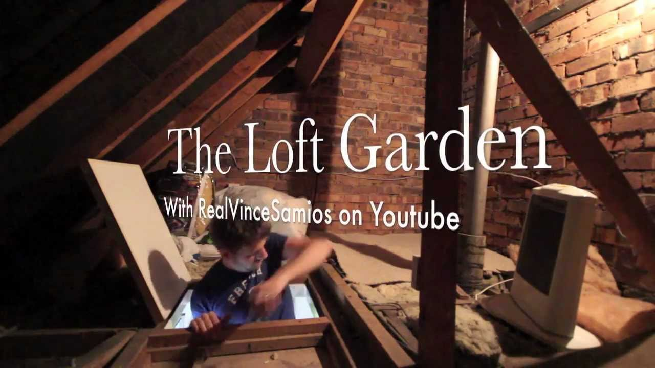 unfinished attic playroom ideas - The Loft Garden Grow Tent & Wiring S01E01