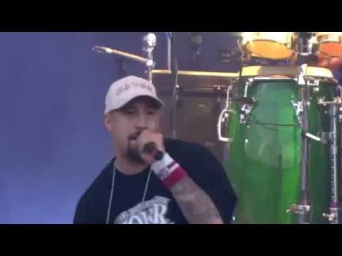 Cypress Hill - Real Estate
