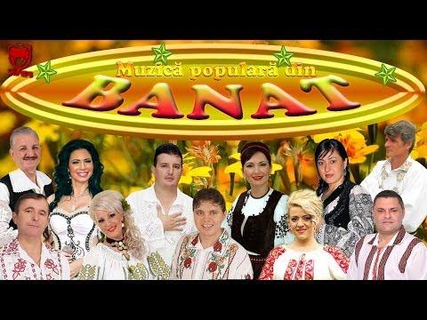 Muzica Populara Din Banat 2014 (colaj Nou) video