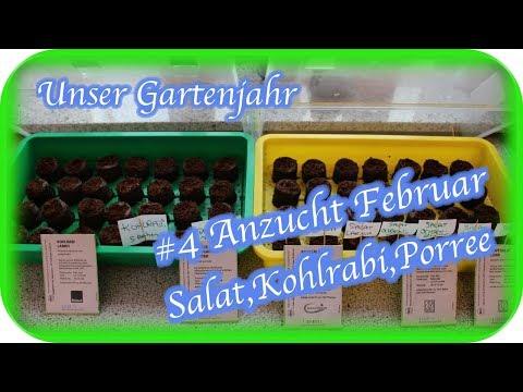 Unser Gartenjahr   #4 - Anzucht Februar   Engelchen