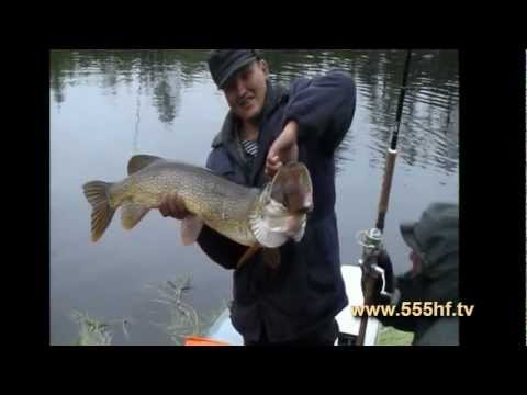 рыбалка и охота на таймыре видео