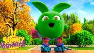 SUNNY BUNNIES - PATINS À ROULEAUX   Dessins Animés Pour Enfants   WildBrain