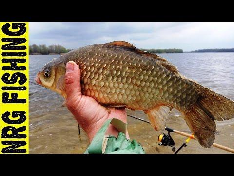 рыбалка на карася фидером