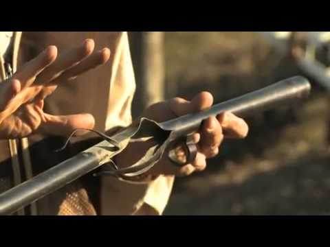 The Gun Nuts: 20 Gauge Shell Lodged in 12 Gauge Shotgun