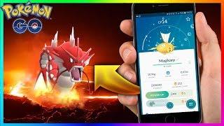 Shiny Magikarp Oficial no Pokémon GO! Video com prova!!!