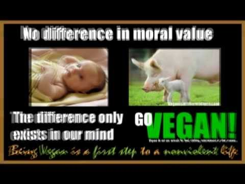 LiveVegan on Facebook: Vegan Poster Slideshow Part 1/5
