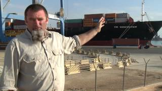 Live export - Egypt: Arrival and unloading